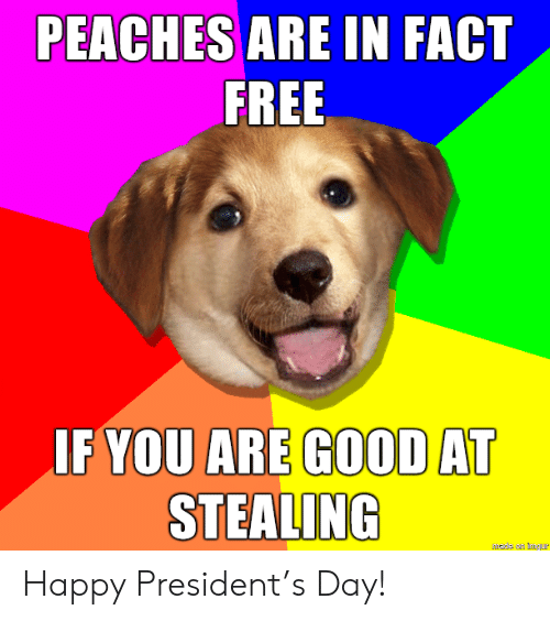 Free, Good, and Happy: PEACHES ARE IN FACT  FREE  IF YOU ARE GOOD AT  STEALING  hade an mgur Happy President's Day!