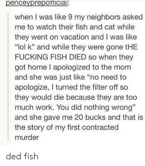 """bucks: penceyprepOTTICiai:  when I was like 9 my neighbors asked  me to watch their fish and cat while  they went on vacation and I was like  """"lol k"""" and while they were gone tHE  FUCKING FISH DIED so when they  got home I apologized to the mom  and she was just like """"no need to  apologize, I turned the filter off so  they would die because they are too  much work. You did nothing wrong""""  and she gave me 20 bucks and that is  the story of my first contracted  murder ded fish"""