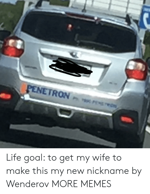Life Goal: PENETRON wrs Life goal: to get my wife to make this my new nickname by Wenderov MORE MEMES