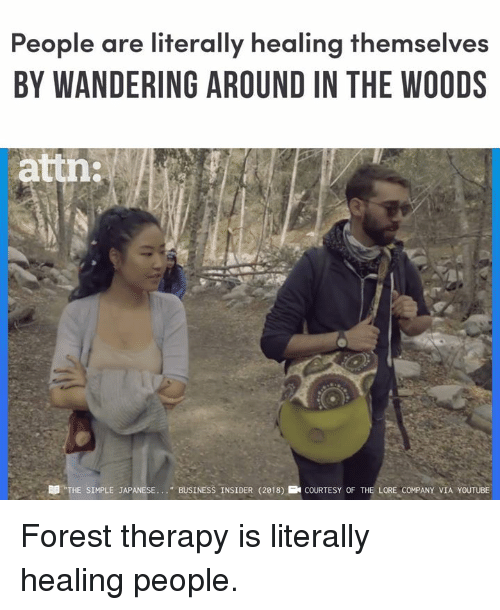 """Memes, youtube.com, and Business: People are literally healing themselves  BY WANDERING AROUND IN THE WOODS  attn:  DD """"THE SIMPLE JAPANESE. .. BUSINESS INSIDER (2018)COURTESY OF THE LORE COMPANY VIA YOUTUBE Forest therapy is literally healing people."""
