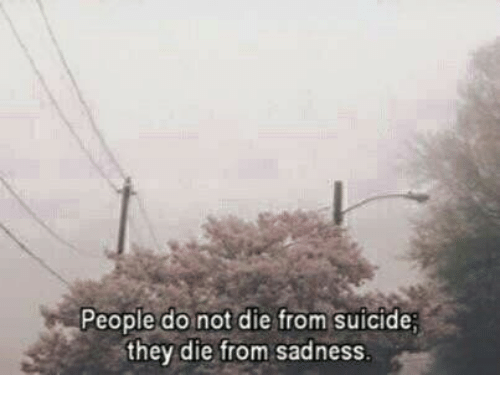 Suicide, Sadness, and They: People do not die from suicide;  they die from sadness