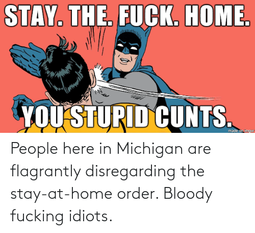 Stay At Home: People here in Michigan are flagrantly disregarding the stay-at-home order. Bloody fucking idiots.