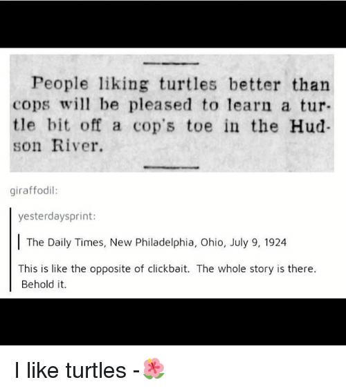 Like Turtles: People liking turtles better than  cops wi be pleased to learn a tur  tle bit off a cop's toe in the Hud-  son River.  giraffodil:  yesterdaysprint:  The Daily Times, New Philadelphia, Ohio, July 9, 1924  This is like the opposite of clickbait. The whole story is there.  Behold it. I like turtles -🌺