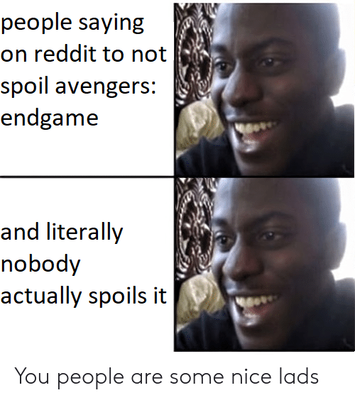Reddit, Avengers, and Nice: people saying  on reddit to not  spoil avengers:  endgame  and liierally  nobody  actually spoils it You people are some nice lads