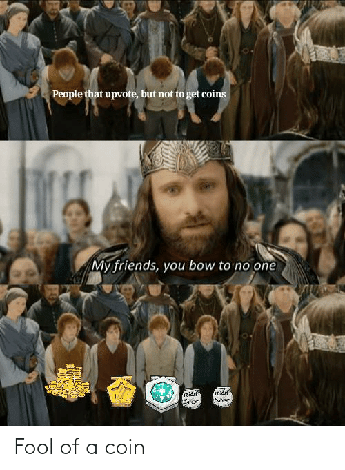 my friends you bow to no one: People that upvote, but not to get coins  My friends, you bow to no one  rekduf  Sikar  rekdut  Sier Fool of a coin