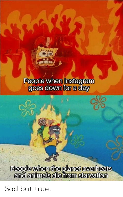Sad But True: People when Instagram  goes down for a day  People when the planet overheats  and animals diefrom starvation Sad but true.
