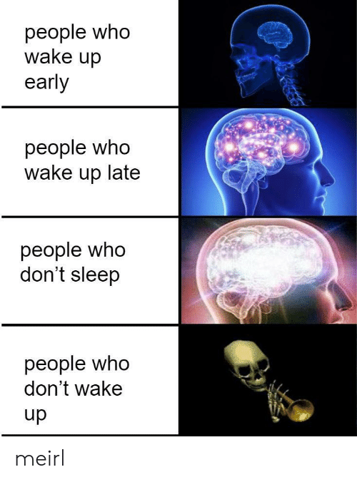 Sleep, MeIRL, and Who: people who  wake up  early  people who  wake up late  people who  don't sleep  people who  don't wake  dn meirl