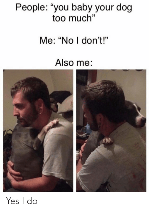 """Memes, Too Much, and Baby: People: """"you baby your dog  too much""""  Me: """"No I don't!""""  Also me: Yes I do"""