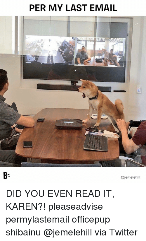 Memes, Twitter, and Email: PER MY LAST EMAIL  B-  @jemelehill DID YOU EVEN READ IT, KAREN?! pleaseadvise permylastemail officepup shibainu @jemelehill via Twitter