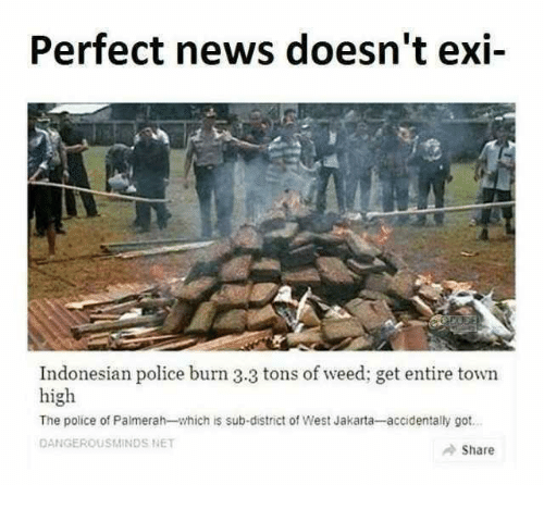 News, Police, and Weed: Perfect news doesn't exi-  Indonesian police burn 3.3 tons of weed; get entire town  high  The police of Palmerah-which is sub-district of West Jakarta-accidentally got  DANGEROUSMINDS NET  Share