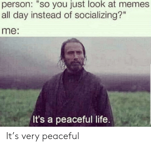 """Life, Day, and All: person: """"so you just look at mem  all day instead of socializing?""""  me:  It's a peaceful life. It's very peaceful"""