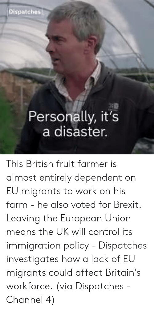Immigration: Personally, it's  a disaster. This British fruit farmer is almost entirely dependent on EU migrants to work on his farm - he also voted for Brexit.  Leaving the European Union means the UK will control its immigration policy - Dispatches investigates how a lack of EU migrants could affect Britain's workforce.  (via Dispatches - Channel 4)