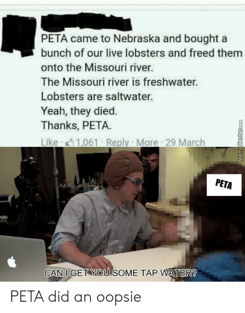 Missouri: PETA came to Nebraska and bought a  bunch of our live lobsters and freed them  onto the Missouri river.  The Missouri river is freshwater.  Lobsters are saltwater.  Yeah, they died.  Thanks, PETA.  Like 1,061 Reply More 29 March  PETA  CAN I GET YOU SOME TAP WATER PETA did an oopsie