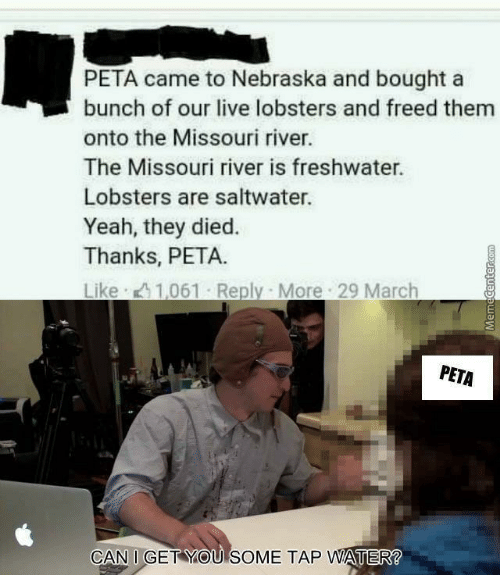 Missouri: PETA came to Nebraska and bought a  bunch of our live lobsters and freed them  onto the Missouri river.  The Missouri river is freshwater.  Lobsters are saltwater.  Yeah, they died.  Thanks, PETA.  PETA  CAN I GET YOU SOME TAP WATER