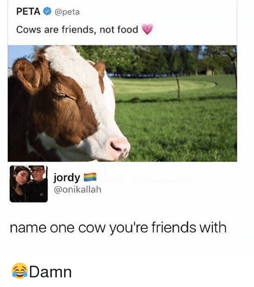 Cowe: PETA@peta  Cows are friends, not food  Jordy  @onikallah  name one cow you're friends with 😂Damn