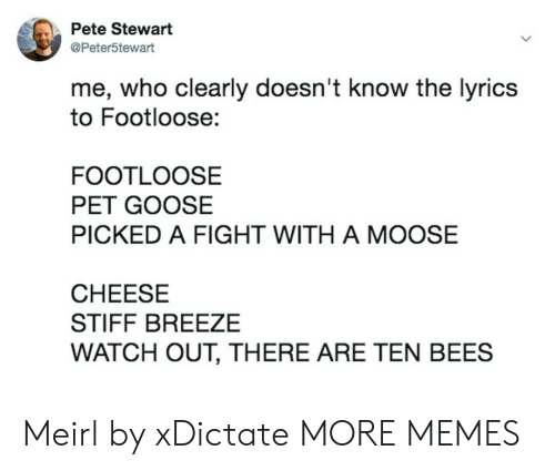 Dank, Memes, and Target: Pete Stewart  @Peter5tewart  me, who clearly doesn't know the lyrics  to Footloose:  FOOTLOOSE  PET GOOSE  PICKED A FIGHT WITH A MOOSE  CHEESE  STIFF BREEZE  WATCH OUT, THERE ARE TEN BEES Meirl by xDictate MORE MEMES