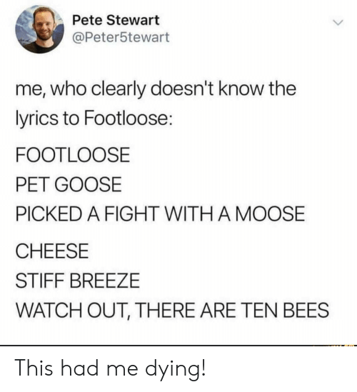 stiff: Pete Stewart  @Peter5tewart  me, who clearly doesn't know the  lyrics to Footloose:  FOOTLOOSE  PET GOOSE  PICKED A FIGHT WITH A MOOSE  CHEESE  STIFF BREEZE  WATCH OUT, THERE ARE TEN BEES This had me dying!