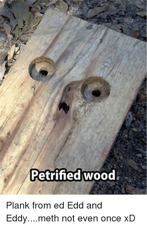 Plank From Ed Edd And Eddy: Petrified wood Plank from ed Edd and Eddy....meth not even once xD