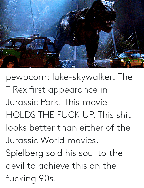 Jurassic World: pewpcorn: luke-skywalker: The T Rex first appearance in Jurassic Park.  This movie HOLDS THE FUCK UP. This shit looks better than either of the Jurassic World movies. Spielberg sold his soul to the devil to achieve this on the fucking 90s.