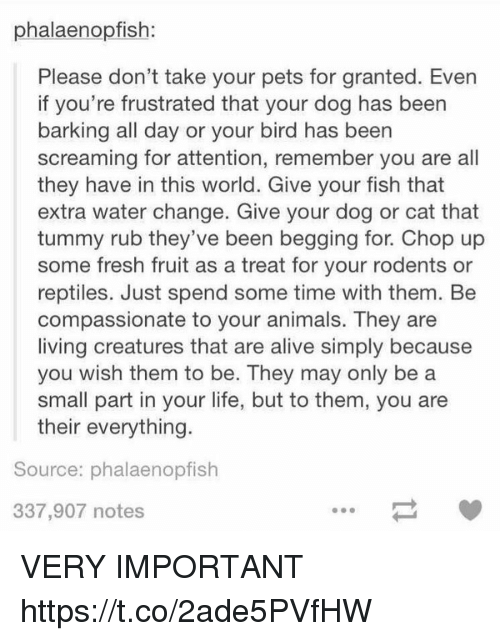 chops: phalaenopfish:  Please don't take your pets for granted. Even  if you're frustrated that your dog has been  barking all day or your bird has been  screaming for attention, remember you are all  they have in this world. Give your fish that  extra water change. Give your dog or cat that  tummy rub they've been begging for. Chop up  some fresh fruit as a treat for your rodents or  reptiles. Just spend some time with them. Be  compassionate to your animals. They are  living creatures that are alive simply because  you wish them to be. They may only be a  small part in your life, but to them, you are  their everything.  Source: phalaenopfish  337,907 notes VERY IMPORTANT https://t.co/2ade5PVfHW
