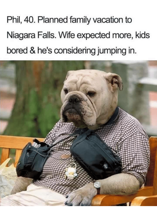 Niagara Falls: Phil, 40, Planned family vacation to  Niagara Falls. Wife expected more, kids  bored & he's considering jumping in.