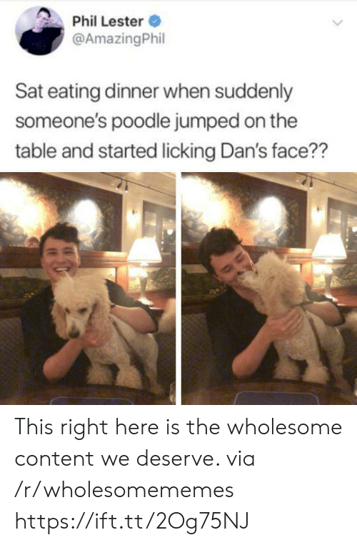 Content, Wholesome, and Jumped: Phil Lester  @AmazingPhil  Sat eating dinner when suddenly  someone's poodle jumped on the  table and started licking Dan's face?? This right here is the wholesome content we deserve. via /r/wholesomememes https://ift.tt/2Og75NJ