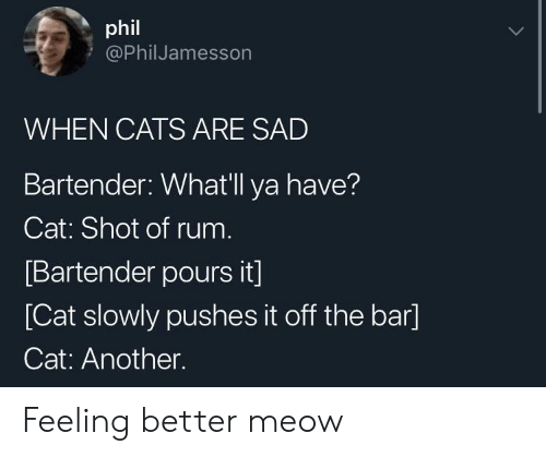 Feeling Better: phil  @PhilJamesson  WHEN CATS ARE SAD  Bartender: Whatll ya have?  Cat: Shot of rum  Bartender pours it]  [Cat slowly pushes it off the bar]  Cat: Another. Feeling better meow