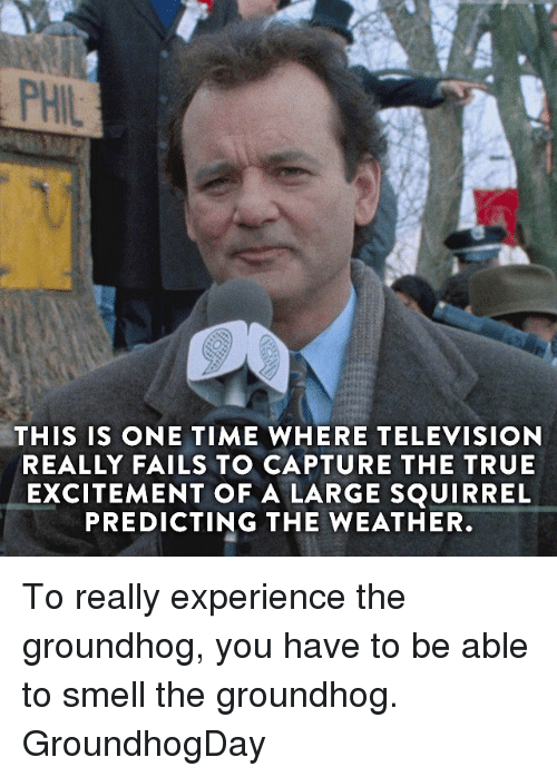 Excits: PHIL  THIS IS ONE TIME WHERE TELEVISION  REALLY FAILS TO CAPTURE THE TRUE  EXCITEMENT OF A LARGE SQUIRREL  PREDICTING THE WEATHER To really experience the groundhog, you have to be able to smell the groundhog. GroundhogDay