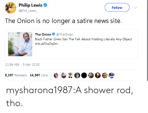 News, Shower, and Target: Philip Lewis  @Phil_ Lewis  Follow  The Onion is no longer a satire news site.  The On.on @TheOnion  Black Father Gives Son The Talk About Holding Literally Any Object  trib.al/TruDq5m  11:56 AM - 5 Apr 2018  5,267 Retweets 14,667 Likes e b②O..O mysharona1987:A shower rod, tho.