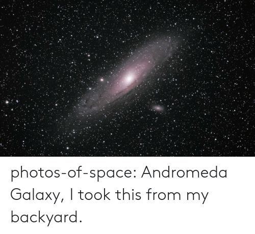 andromeda: photos-of-space:  Andromeda Galaxy, I took this from my backyard.