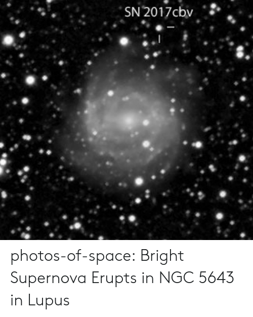 supernova: photos-of-space:  Bright Supernova Erupts in NGC 5643 in Lupus