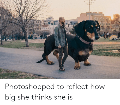 Thinks: Photoshopped to reflect how big she thinks she is
