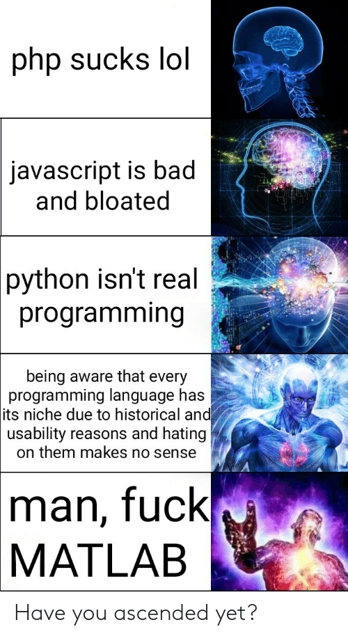 Hating: php sucks lol  javascript is bad  and bloated  python isn't real  programming  being aware that every  programming language has  its niche due to historical and  usability reasons and hating  on them makes no sense  man, fuck  MATLAB Have you ascended yet?