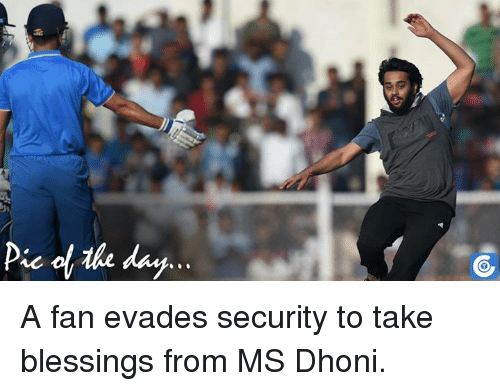 Memes, 🤖, and Dhoni: Pic day A fan evades security to take blessings from MS Dhoni.