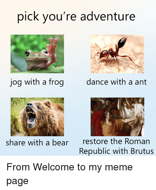Rough Roman: pick you're adventure  jog with a frog  dance with a ant  restore the Roman  Republic with Brutus  share with a bear From Welcome to my meme page
