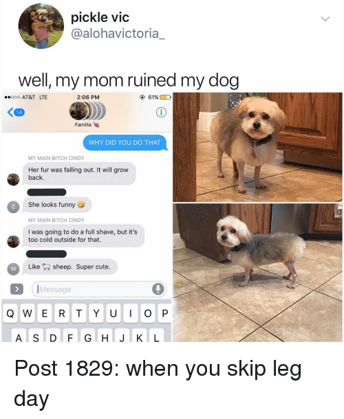 Bitch, Cute, and Funny: pickle vid  @alohavictoria_  well, my mom ruined my dog  ooo AT&T LTE  2:06 PM  61%E0  く四  Familia  WHY DID YOU DO THAT  MY MAIN BITCH CINDY  Her fur was falling out. It will grow  back.  She looks funny  MY MAIN BITCH CINDY  I was going to do a full shave, but it's  too cold outside for that.  Likesheep. Super cute.  IMessage  Q W E R T Y U O P  A S D F G H JIK L Post 1829: when you skip leg day