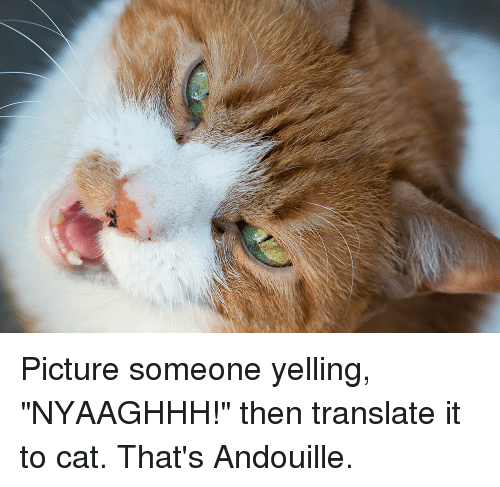 """Translate, Cat, and Picture: Picture someone yelling, """"NYAAGHHH!"""" then translate it to cat. That's Andouille."""