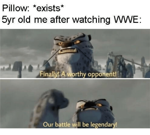 World Wrestling Entertainment: Pillow: *exists*  5yr old me after watching WWE  Finally A worthy opponent!  Our battle will be legendary!