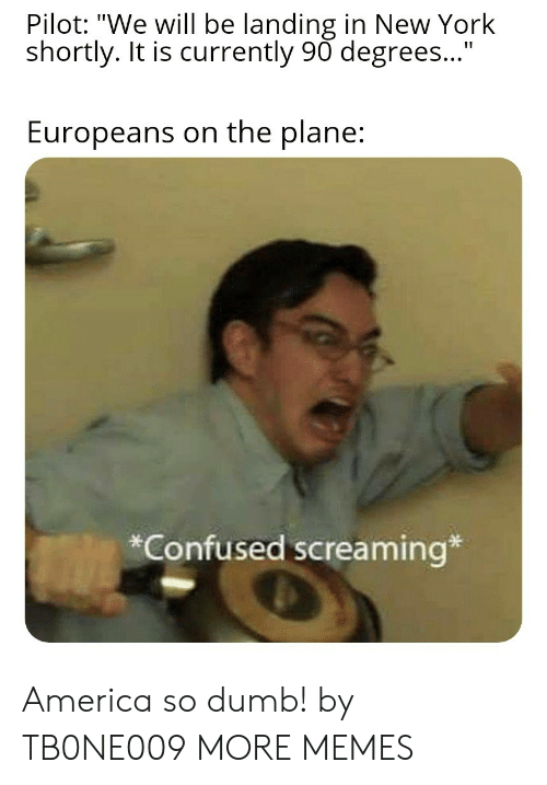 "America, Confused, and Dank: Pilot: ""We will be landing in New York  shortly. It is currently 90 degrees...""  Europeans on the plane:  *Confused screaming* America so dumb! by TB0NE009 MORE MEMES"