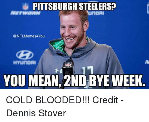 Bye Week: PITTSBURGH STEHERSP  nOAI  NFLMemes4You  HYLUnoAI  YOU MEAN, 2ND BYE WEEK COLD BLOODED!!!  Credit - Dennis Stover