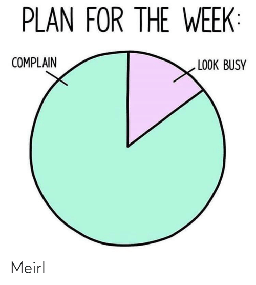 busy: PLAN FOR THE WEEK:  COMPLAIN  LOOK BUSY Meirl