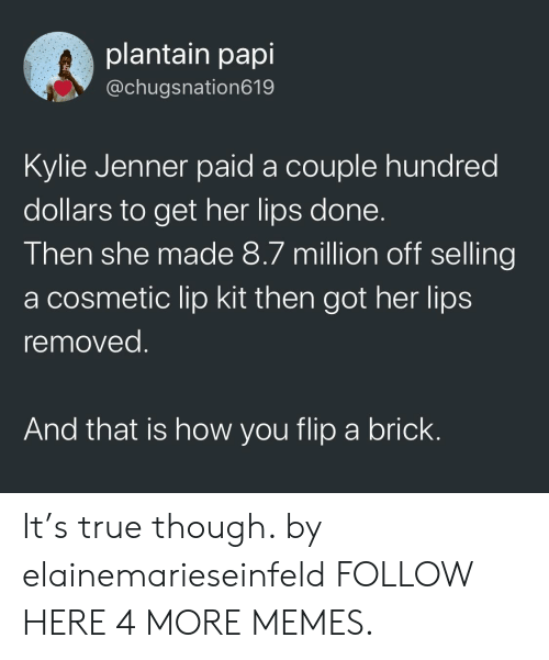 plantain: plantain papi  @chugsnation619  Kylle Jenner paid a couple hundred  dollars to get her lips done  Then she made 8.7 million off selling  a cosmetic lip kit then got her lips  removed  And that is how you flip a brick It's true though. by elainemarieseinfeld FOLLOW HERE 4 MORE MEMES.