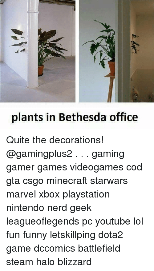 minecrafte: plants in Bethesda office Quite the decorations! @gamingplus2 . . . gaming gamer games videogames cod gta csgo minecraft starwars marvel xbox playstation nintendo nerd geek leagueoflegends pc youtube lol fun funny letskillping dota2 game dccomics battlefield steam halo blizzard