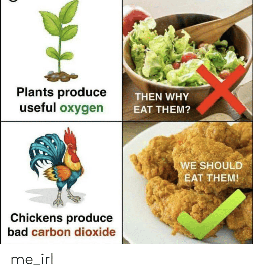 Bad, Oxygen, and Irl: Plants produce  useful oxygen  THEN WHY  EAT THEM?  WE SHOULD  EAT THEM  Chickens produce  bad carbon dioxide me_irl
