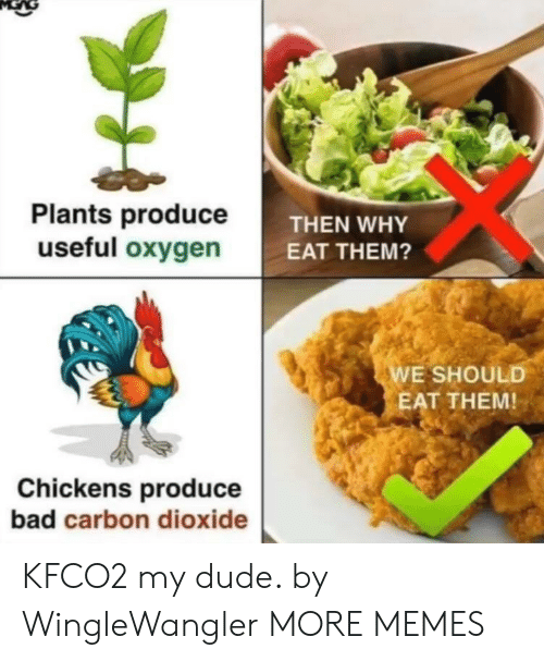 Bad, Dank, and Dude: Plants produceT  useful oxygen  THEN WHY  EAT THEM?  E SHOULD  EAT THEM!  Chickens produce  bad carbon dioxide KFCO2 my dude. by WingleWangler MORE MEMES