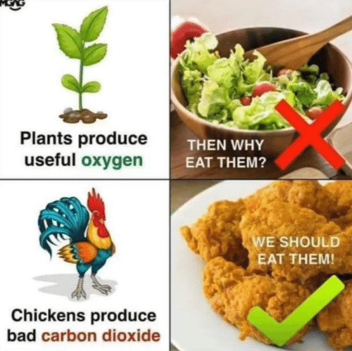 Bad, Oxygen, and Carbon: Plants produceT  useful oxygen  THEN WHY  EAT THEM?  E SHOULD  EAT THEM!  Chickens produce  bad carbon dioxide