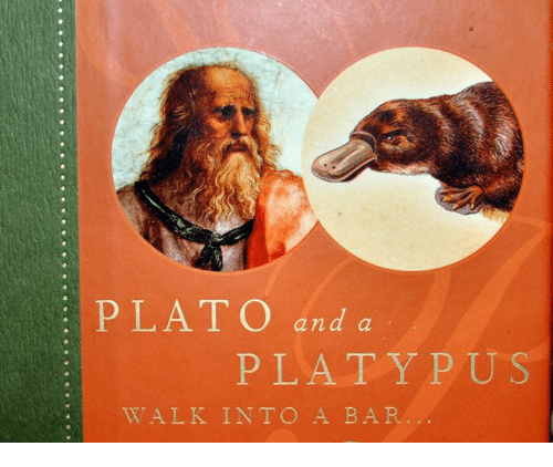 Classical Art, Plato, and Platypus: PLATO and a  PLATYPUS  WALK INTO A BAR
