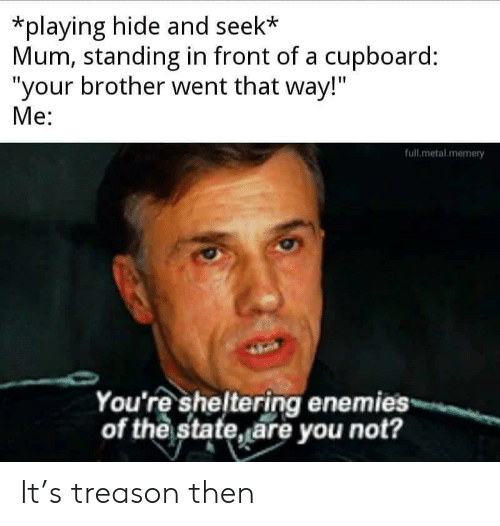 """Enemies, The State, and Treason: *playing hide and seek*  Mum, standing in front of a cupboard:  """"your brother went that way!""""  Me:  full.metal memery  You're sheltering enemies  of the state, are you not? It's treason then"""