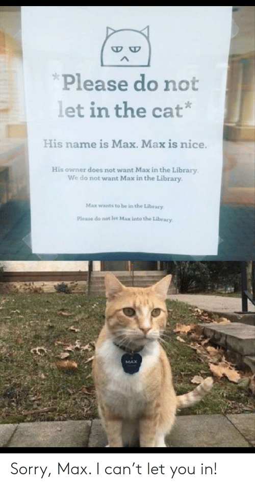 Does Not Want: Please do not  let in the cat  His name is Max. Max is nice.  His owner does not want Max in the Library  We do not want Max in the Library  Max wants to be in the Library  Please do not let Max into the Library  MAX Sorry, Max. I can't let you in!