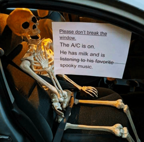 The A: Please don't break the  window.  The A/C is on.  He has milk and is  listening to his favorite  spooky music.